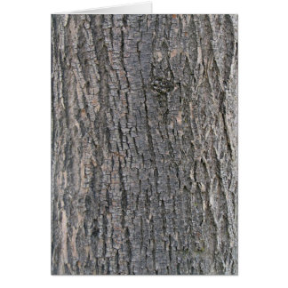 Vertical texture of tree bark card