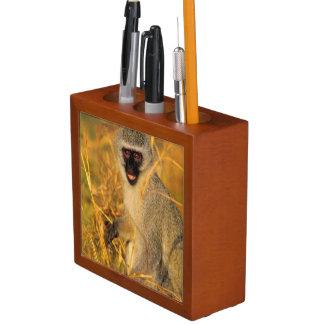 Vervet Monkey (Chlorocebus Pygerythrus) Desk Organiser