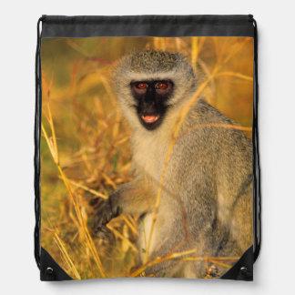 Vervet Monkey (Chlorocebus Pygerythrus) Drawstring Bags