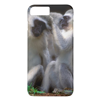 Vervet Monkey's (Cercopithecus Aethiops) iPhone 7 Plus Case