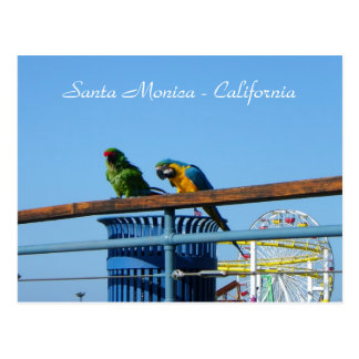 Very Cool Santa Monica Postcard! Postcard