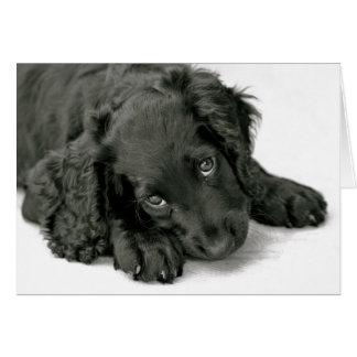 Very Cute Puppy Card