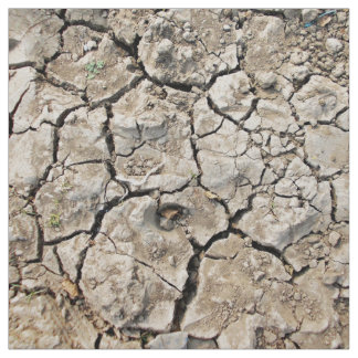 Very Dry And Cracked Soil Fabric