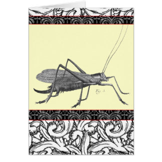 Very Elegant Grasshopper from Antique Print Card