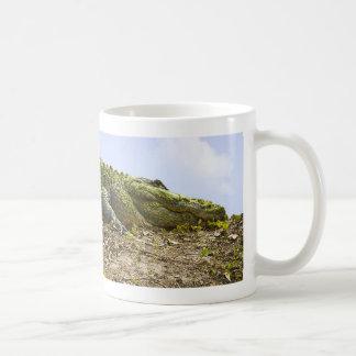 Very Large Alligator- Nature Photograph Coffee Mug