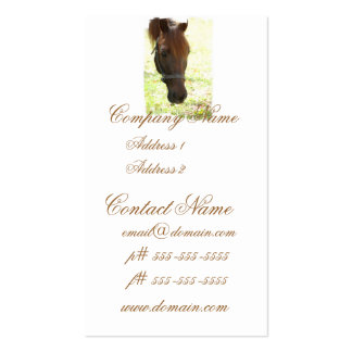Very Sweet Chestnut Horse Pack Of Standard Business Cards