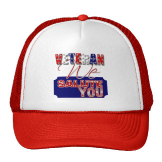 Veteran s day memorial war soldier hat