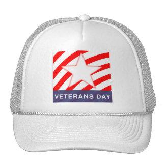 Veterans Day Mesh Hat
