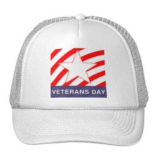 Veterans' Day Mesh Hat