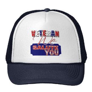 Veteran's day memorial war soldier hats
