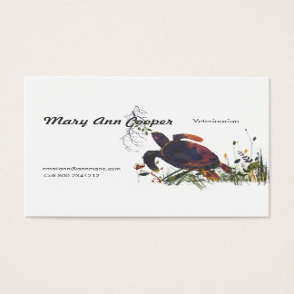 Veterinarian Watercolor Modern Exotic Turle Business Card