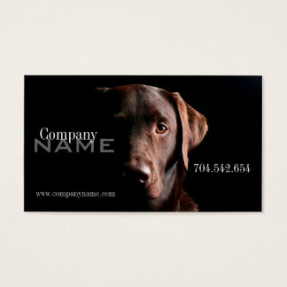 Veterinary Dog Doggy Pet Care Card