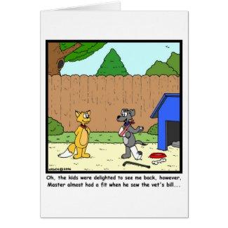 Vet's Bill Greeting Cards