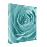 Vibrant Aqua Rose, Floral Nature Photograph
