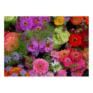Vibrant colored daisies pack of chubby business cards