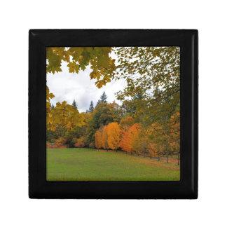Vibrant Fall Colors in Oregon City Park Gift Box