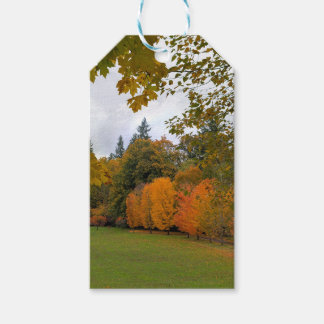 Vibrant Fall Colors in Oregon City Park Gift Tags