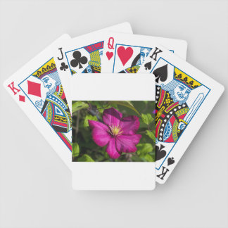Vibrant Magenta Pink Clematis Blossom Bicycle Playing Cards