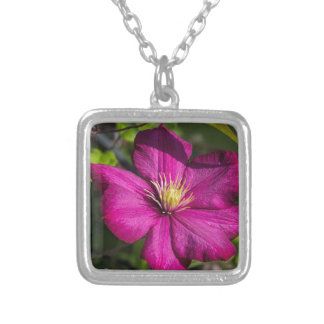 Vibrant Magenta Pink Clematis Blossom Square Pendant Necklace