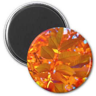 Vibrant Orange and Gold Autumn Leaves 6 Cm Round Magnet