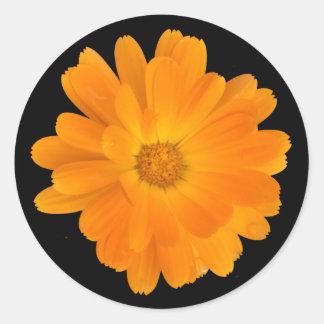 Vibrant Orange Dahlia Flower Round Sticker