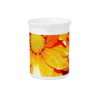 Vibrant Orange Fiore Beverage Pitcher