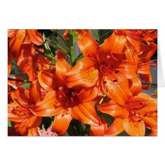 Vibrant Orange Tiger Lilies Card