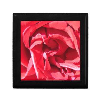 Vibrant Pink Rose Petals Small Square Gift Box