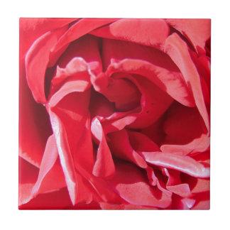 Vibrant Pink Rose Petals Small Square Tile