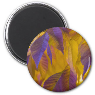 Vibrant Purple and Gold Autumn Leaves 6 Cm Round Magnet