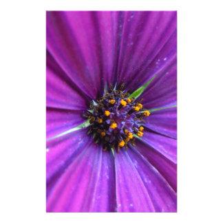 Vibrant Purple Daisy Stationery Paper