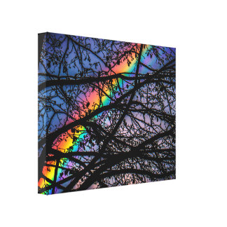 Vibrant Rainbow | Dark Spring Tree | Natural Canvas Print