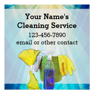Vibrant Rays Custom Cleaning Service Business