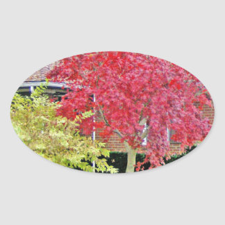 Vibrant Red Fall Tree Oval Sticker