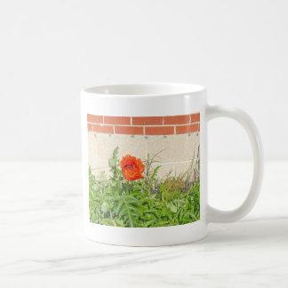 Vibrant Red Poppy Blooming in Garden Basic White Mug