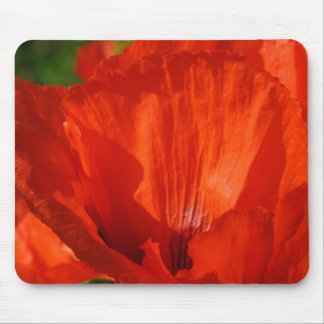 Vibrant Red Poppy Mouse Pad