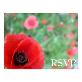Vibrant Red Poppy RSVP Postcard