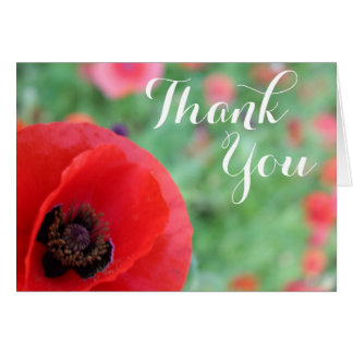 Vibrant Red Poppy Thank You card