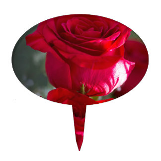Vibrant Romantic Red Roses Cake Picks