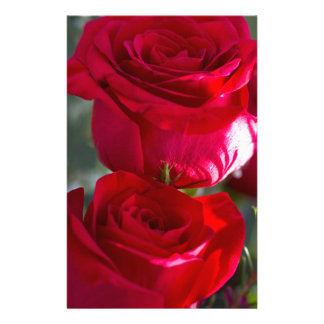 Vibrant Romantic Red Roses Custom Stationery