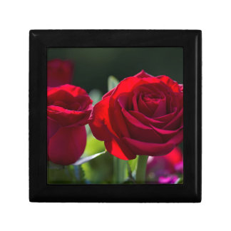 Vibrant Romantic Red Roses Small Square Gift Box