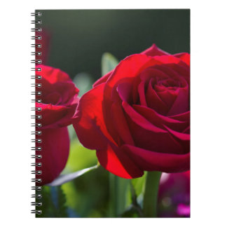 Vibrant Romantic Red Roses Spiral Notebooks