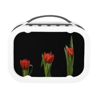 Vibrant Stylish Red Tulip On Black Lunchbox