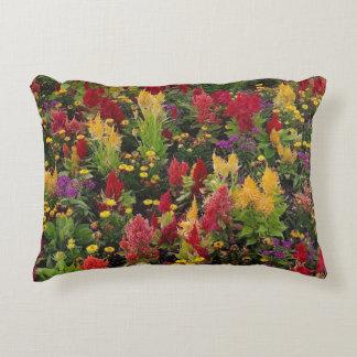 Vibrant Summer Flower Garden in Orlando Florida Accent Cushion