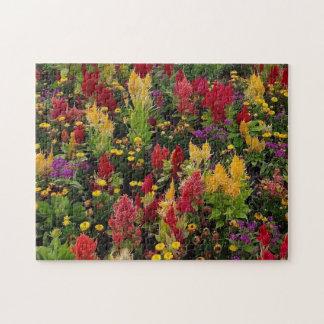 Vibrant Summer Flower Garden in Orlando Florida Puzzles