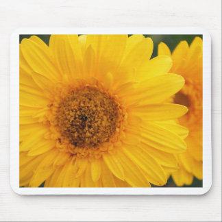 Vibrant Sunflower Mouse Pad