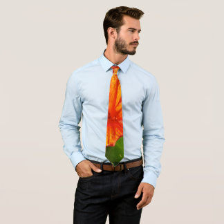 Vibrant Tie
