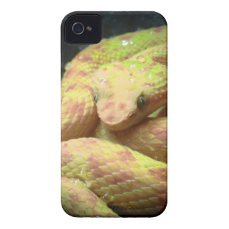 Vibrant Yellow Viper iPhone 4 Case-Mate Case