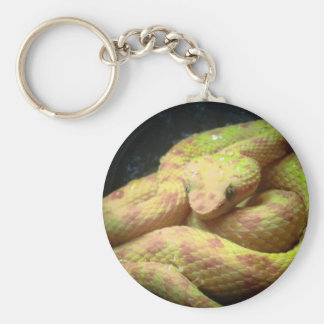 Vibrant Yellow Viper Key Ring