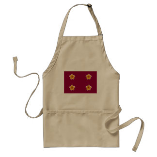 Vice Minister Of Defense Of Japan, Japan flag Aprons